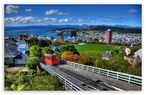new_zealand_houses_wellington_from_above-t2